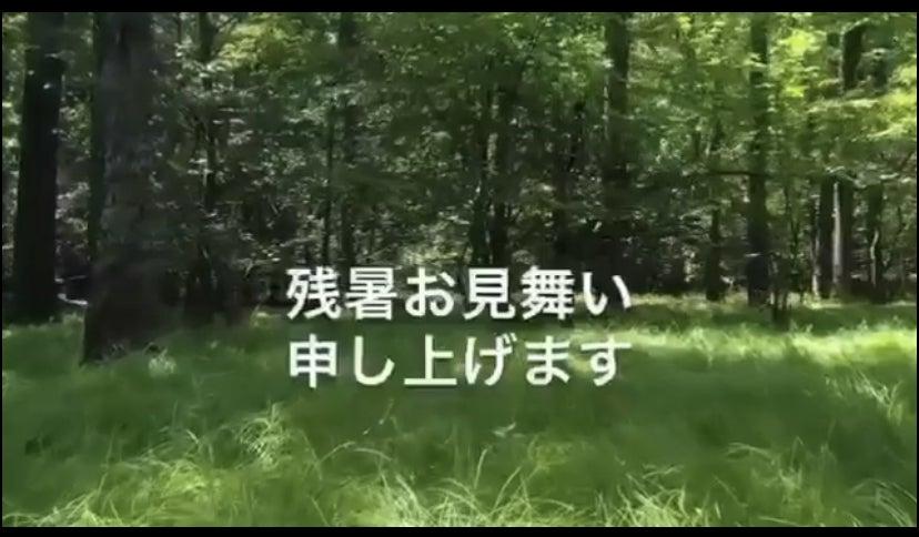 暑中 見舞い の 動画