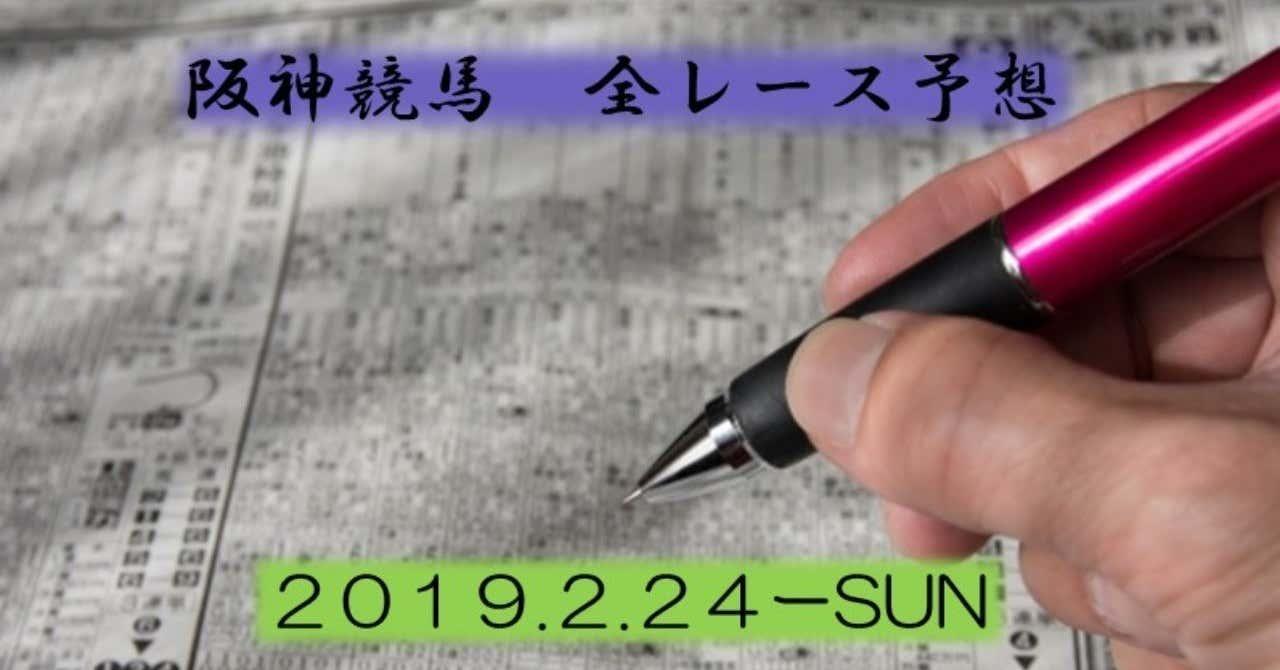 阪神競馬全レース