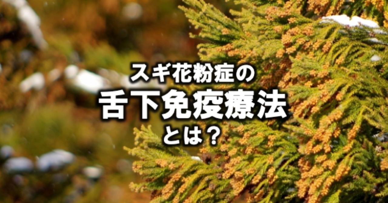 スクリーンショット_2019-03-14_18