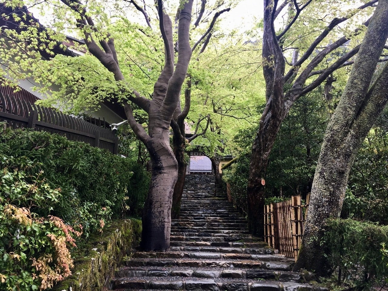 京都・寂光院、火災を生き延びた地蔵菩薩の話|Mariko Yanaka|note