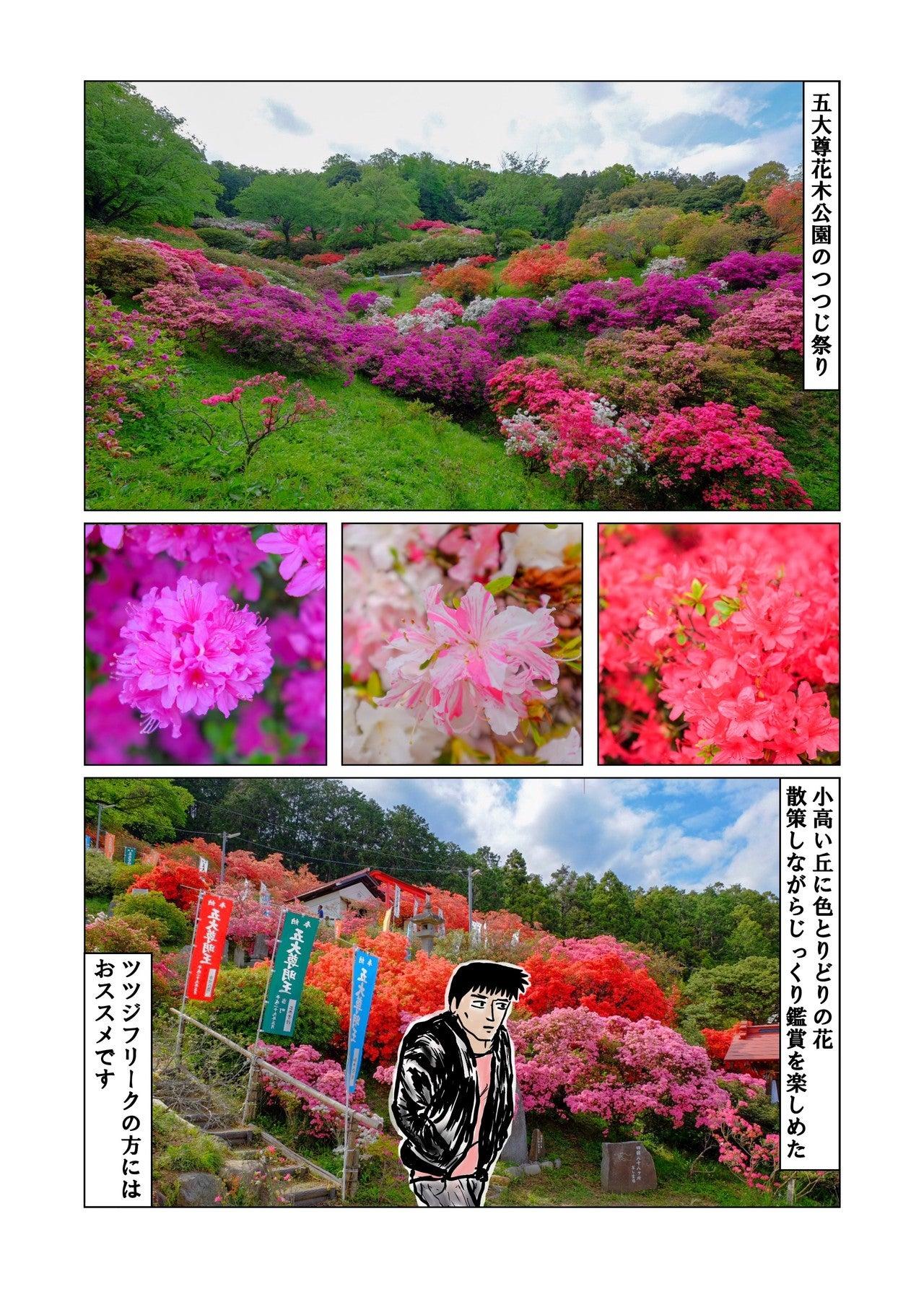 五大尊花木公園つつじ祭り10_5mb