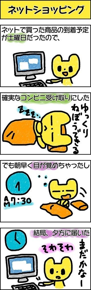 IMG_0086R_ネットショッピングc