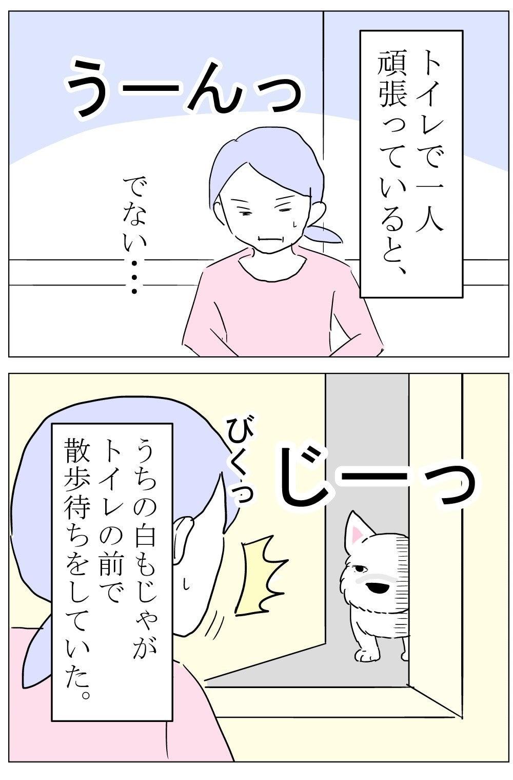 ちーちゃん77-1