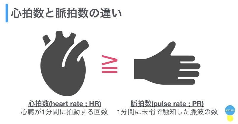 心拍 数 と 脈拍 数