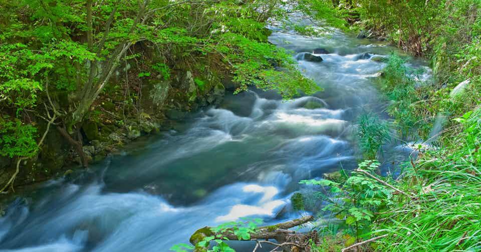 「川 上流 下流」の画像検索結果