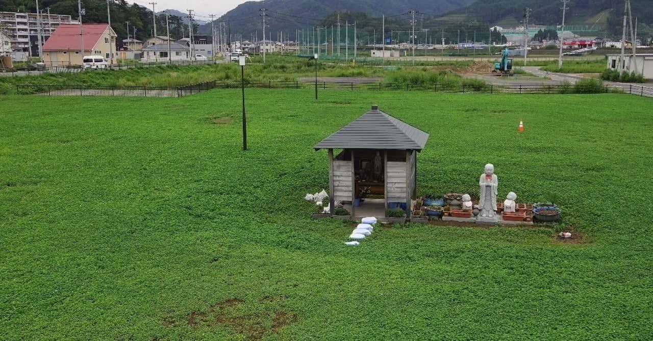 大槌町旧役場庁舎跡_日中GOC