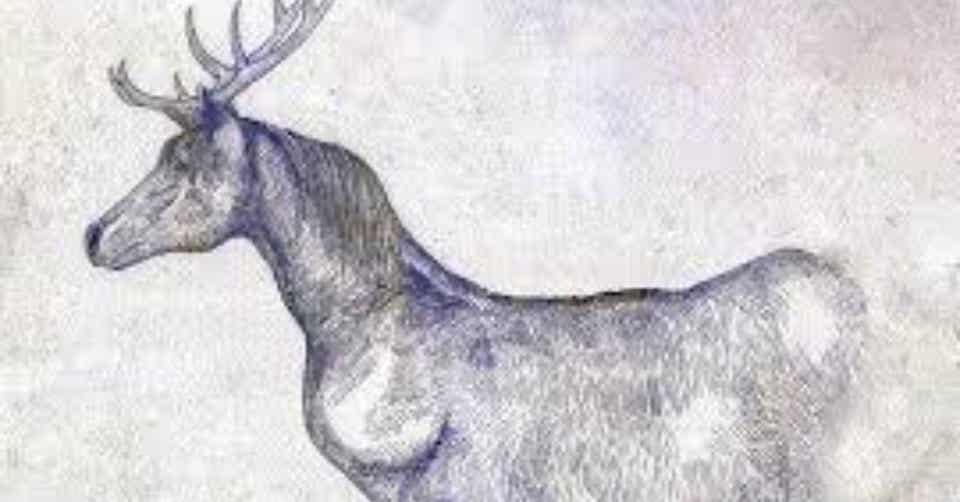 馬と鹿のCメロがおかしい|しえとみ|note