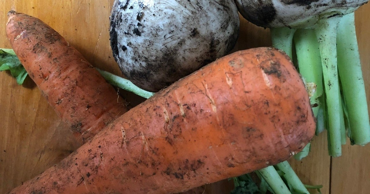野菜 と は 有機