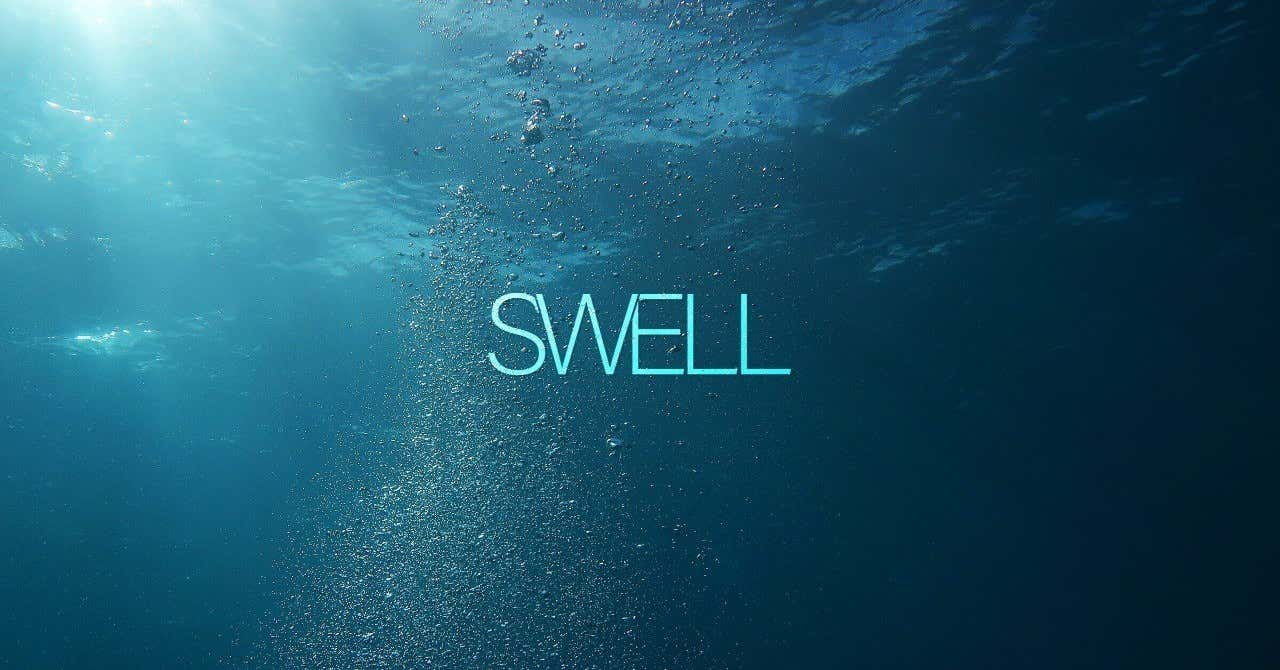 プログラミング歴3年目で有料WordPressテーマを開発した話 〜『SWELL』を作ったきっかけ〜|了|note