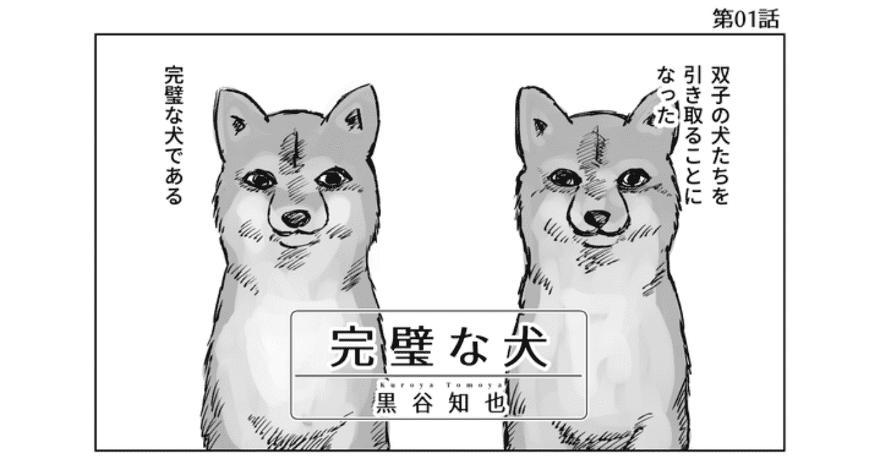 完璧な犬_001