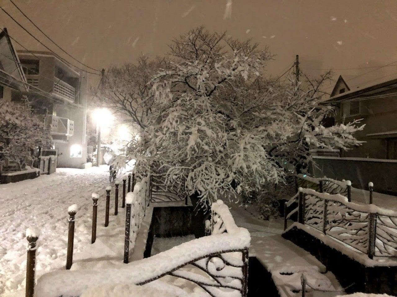ステマ アナ雪