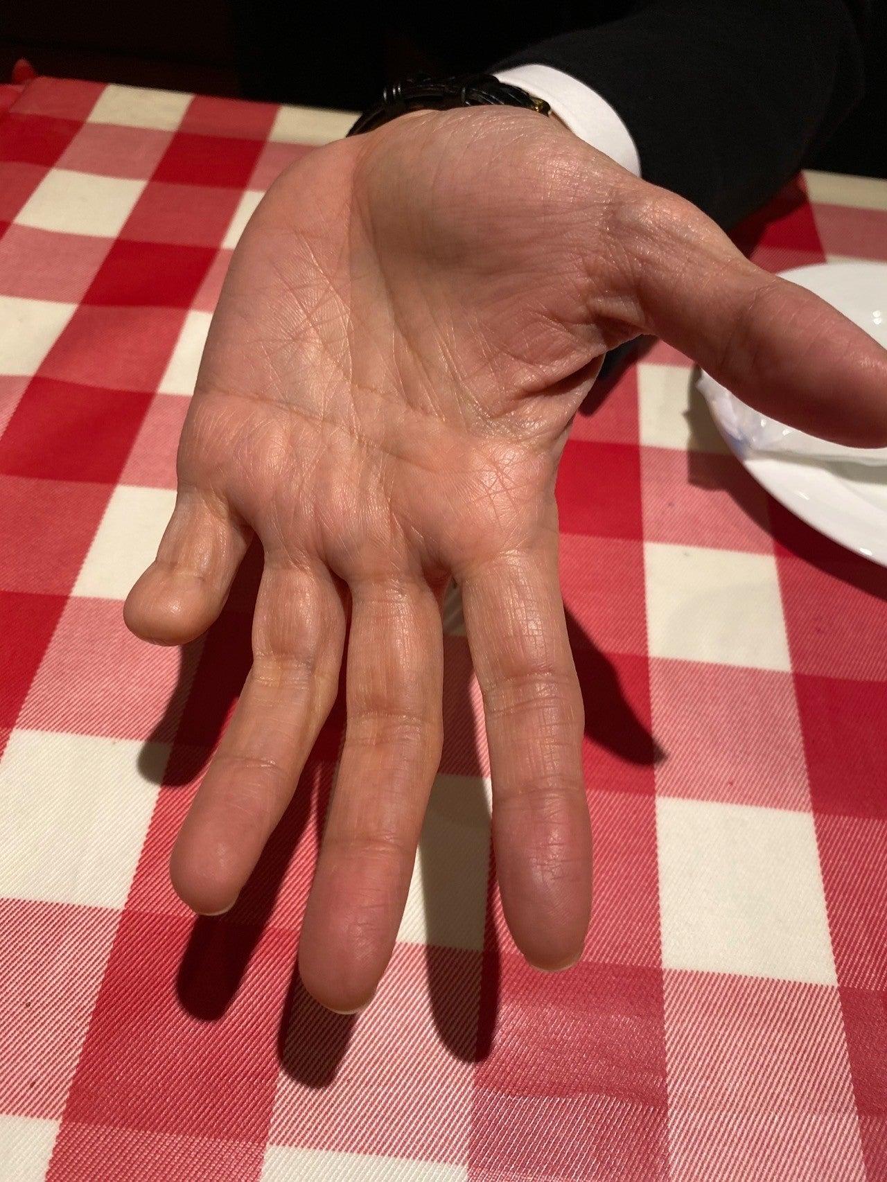 指 猫組長 ネコ
