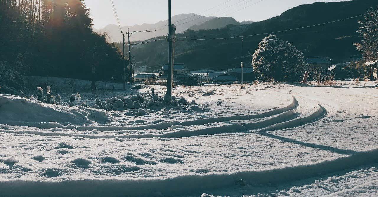 写真_2019-01-18_8_07_13