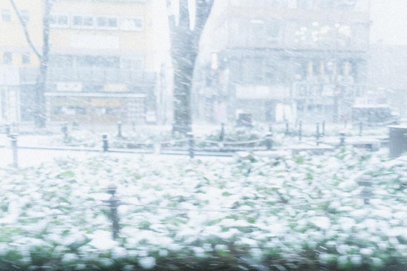 雪が 降ら ない