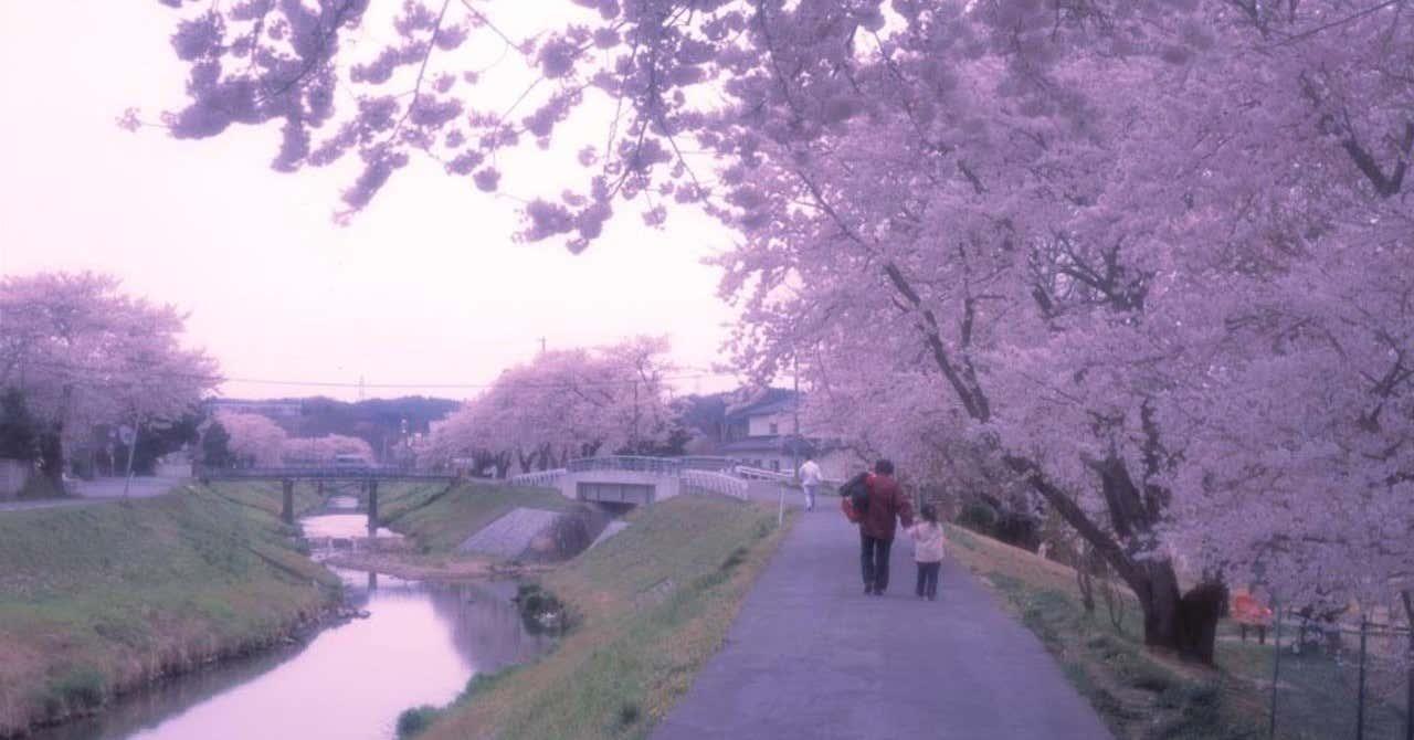 春の前田川02_双葉町_