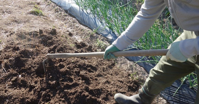 づくり 家庭 菜園 土