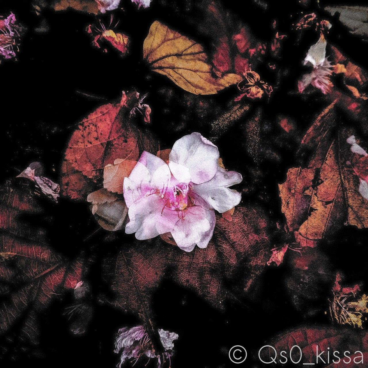 に しま けり 色 ながめ な いた に ふる 世に せ に うつり づら 花 わが身 は の