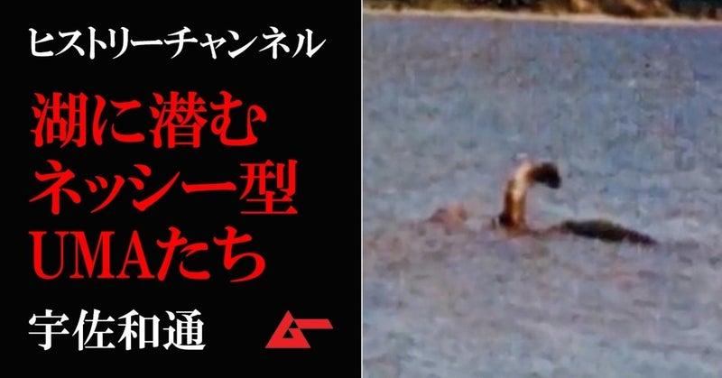 HC水中UMAtop