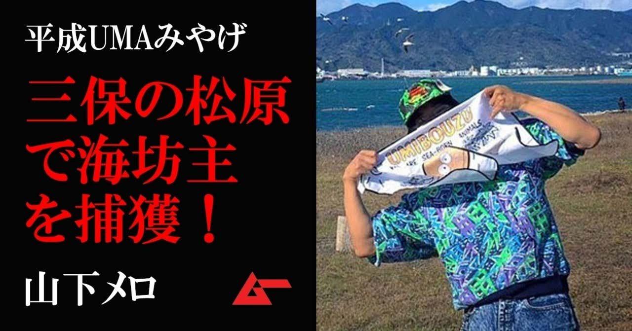 平成UMAみやげ三保松原海坊主top