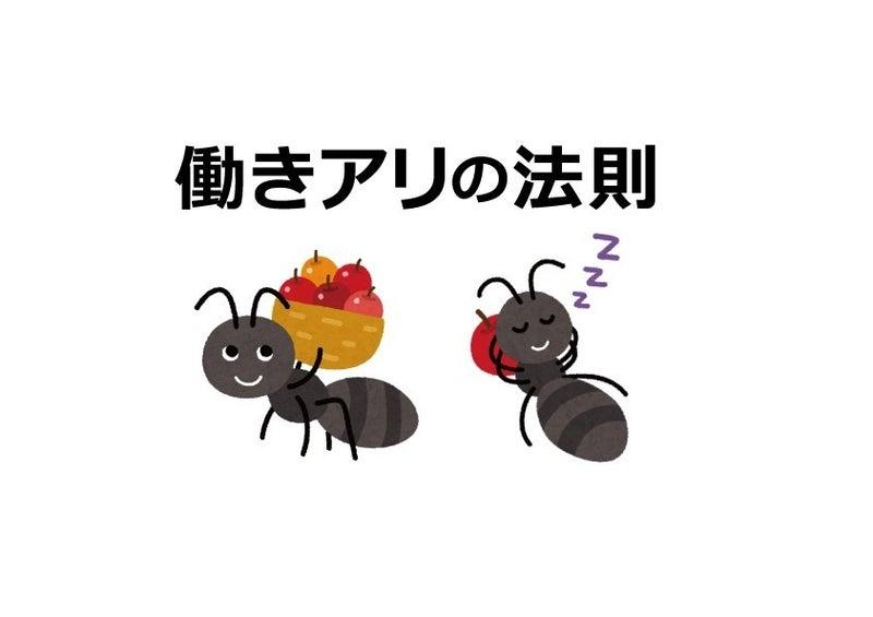 アリ の 法則 働き