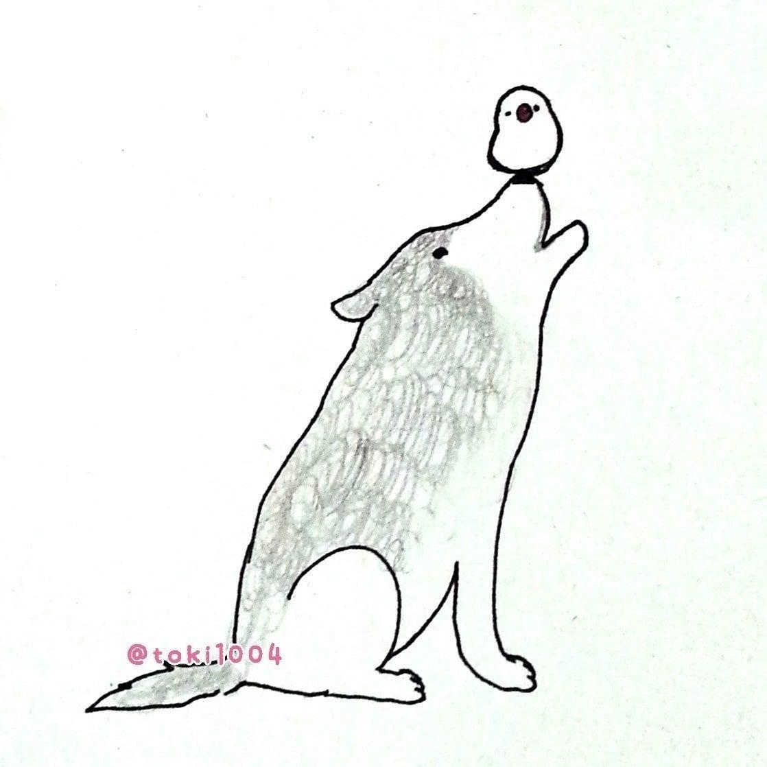 オオカミと文鳥 絵 イラスト イラストレーター お絵描き ドローイング 一発描き ボールペン 文鳥 オオカミ ミスマッチな組み合わせ 逆にかわいい とき 10 24 25鳥フェス大阪 Note
