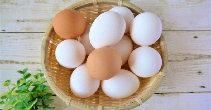 卵 賞味 期限 生