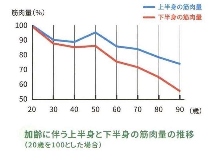 下半身の筋肉量/筋力低下を防ごう(ダイエットにも効果あり)|DICE Training|note