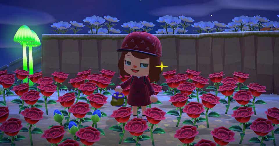 あつまれどうぶつの森 金のバラ 咲かない
