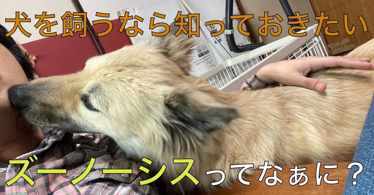 から うつる 病気 犬