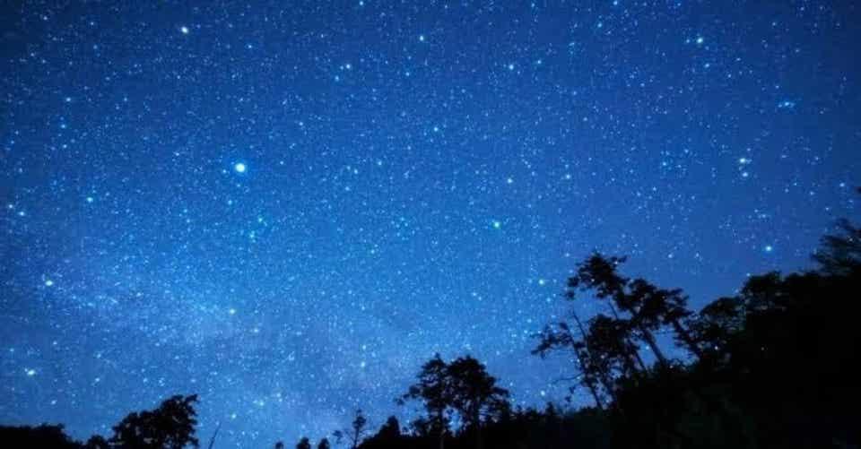 空に星が綺麗|なれ|note