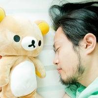 犬養 拓(母の訃報専用)