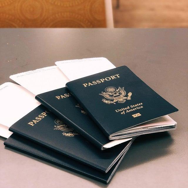 ゴーン パスポート