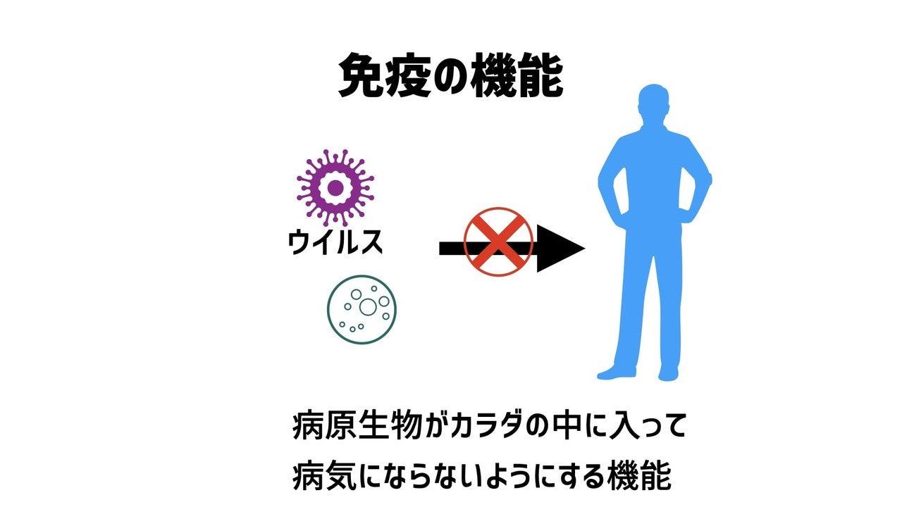 免疫 の機能.001