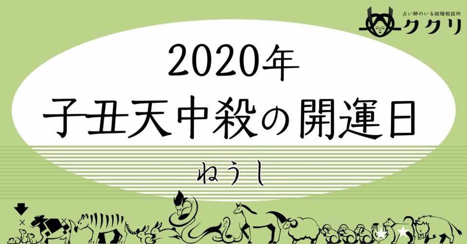 銀のイルカ 2020 7月
