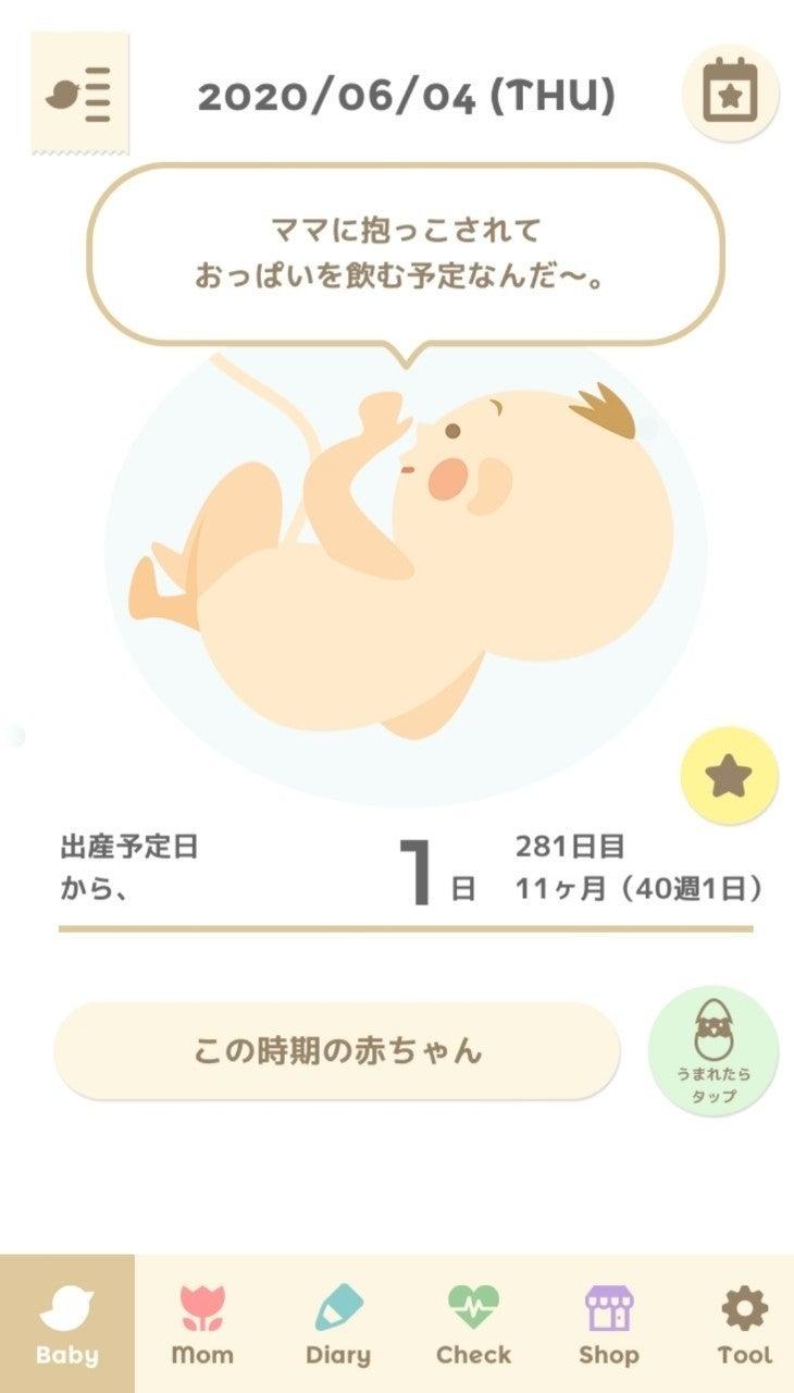 日 出産 予定
