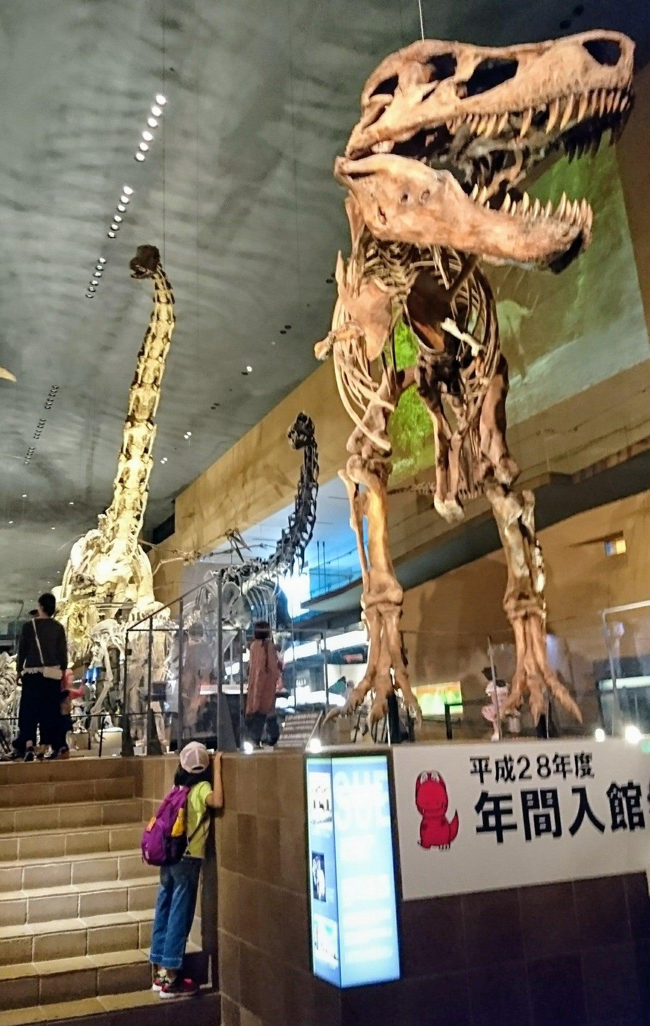 いのち たび 北九州 博物館 の