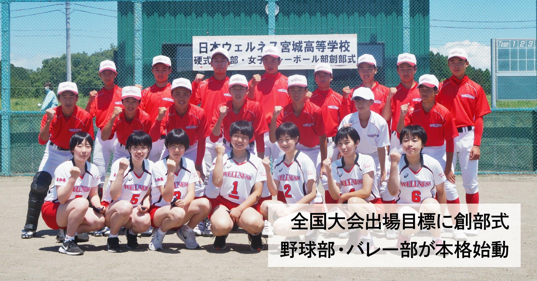 宮城 高校 野球