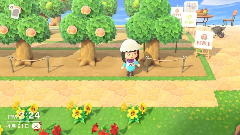 森 マイ あつ 果樹 デザイン 園