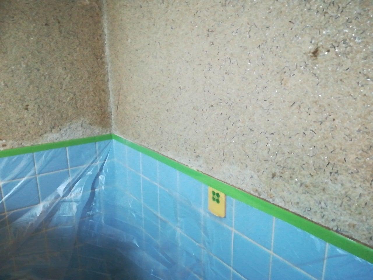 補修 砂壁