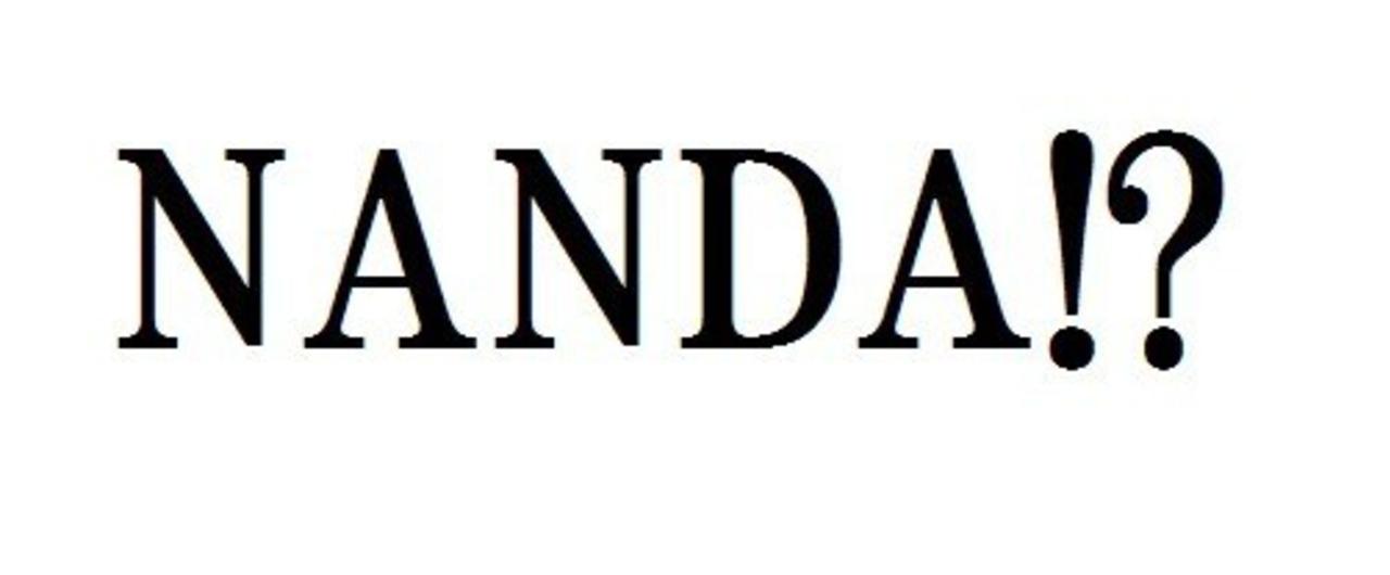 ナンダ__