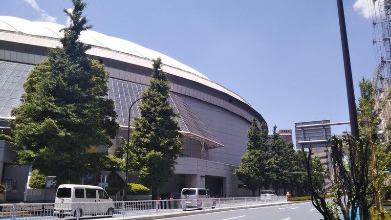 ドーム 面積 東京
