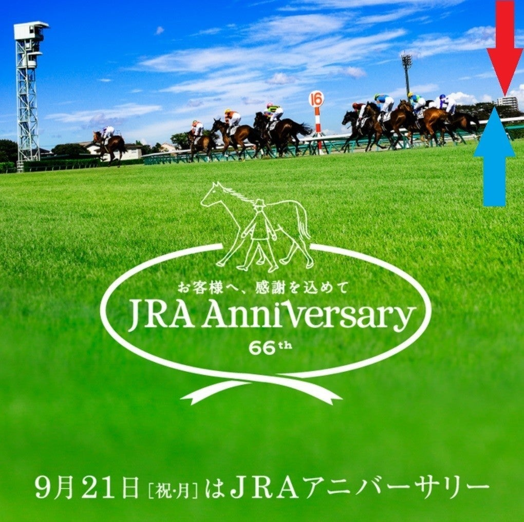 【オールカマー ・ 神戸新聞杯 2020 サイン競馬の世界】サイン競馬の世界の歴史は繰り返す。いい意味でも、悪い意味でも。それを乗り越えたとき、何が見えてくるのだろうか~