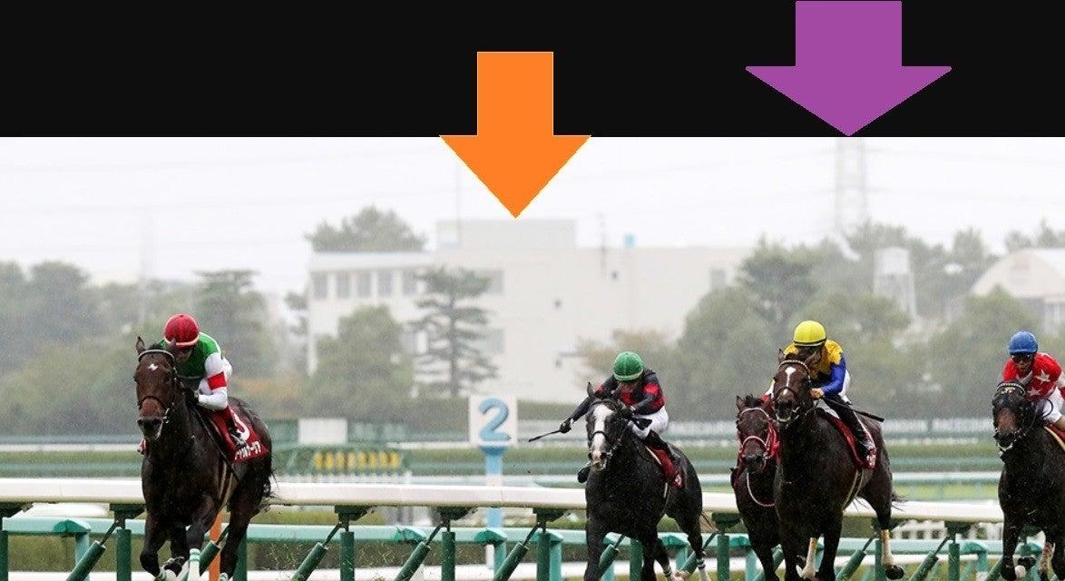 オールカマー ・ 神戸新聞杯 2020 サイン馬券考察|超高配当馬券サインがJRAサイン画像から再び発信された!そのサインパワーが今度はどのような輝きを見せるか大注目!