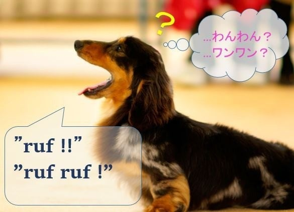 犬 の 鳴き声 英語