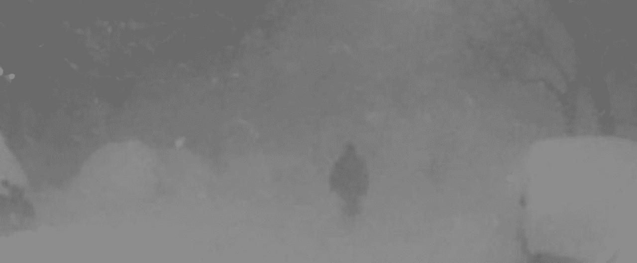 スクリーンショット_2016-10-04_2.05.05