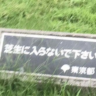 歌 浩次 の 夜明け 宮本