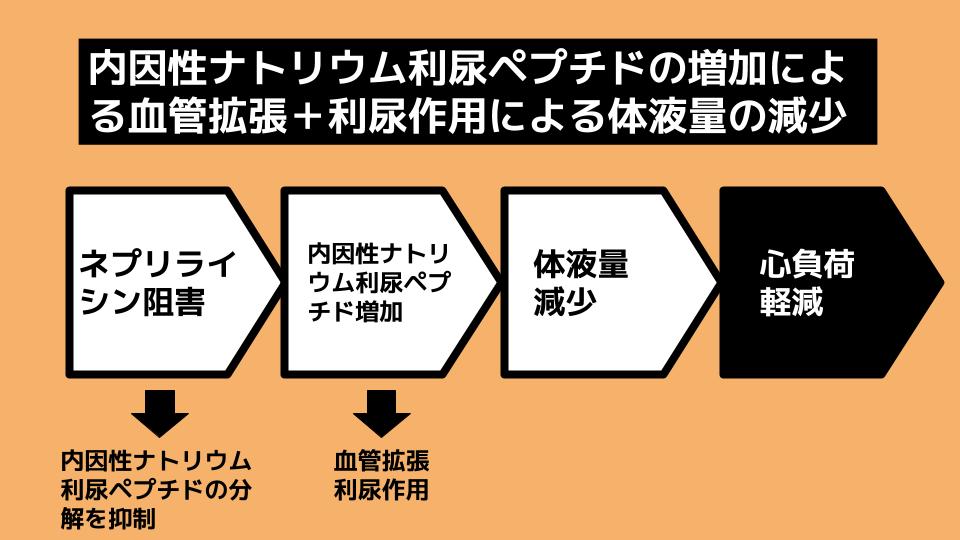 【新薬】エンレストとは何か?-3