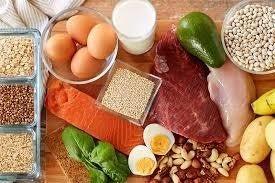タンパク質の摂取