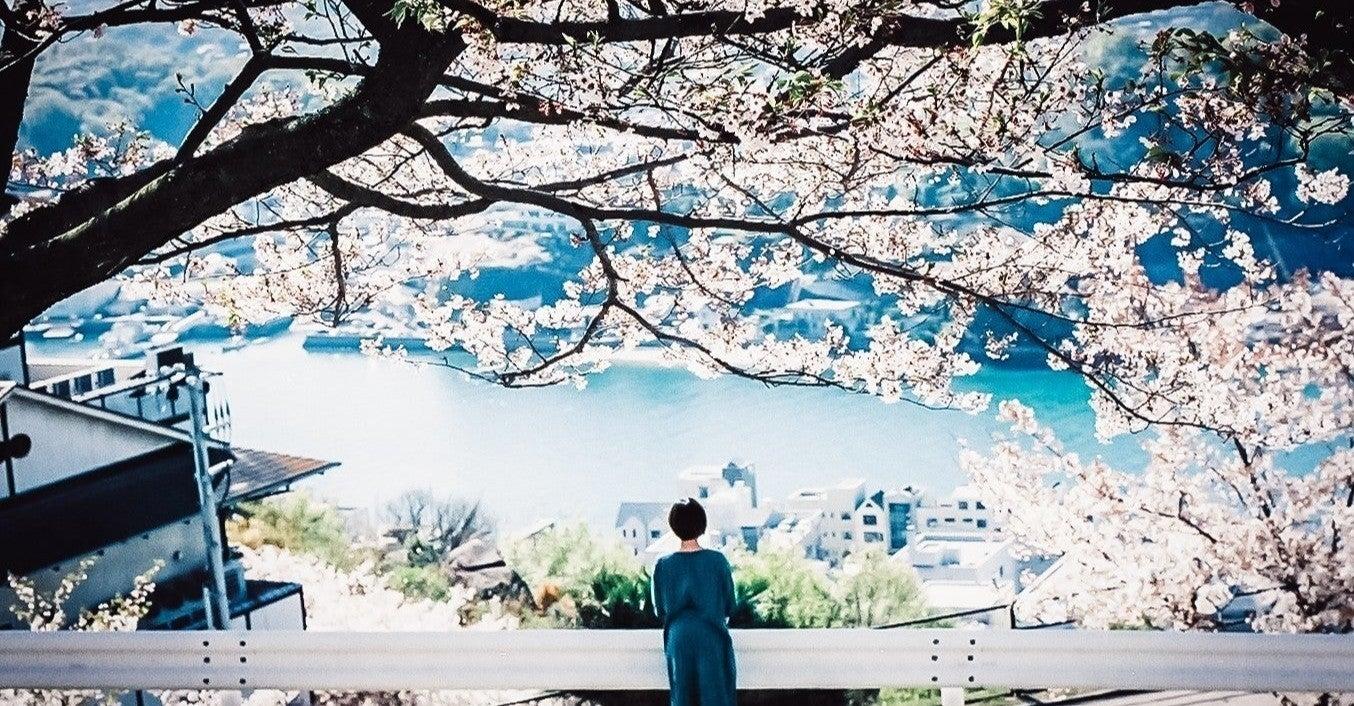 恋人 の 僕 よう 桜の 映画 な