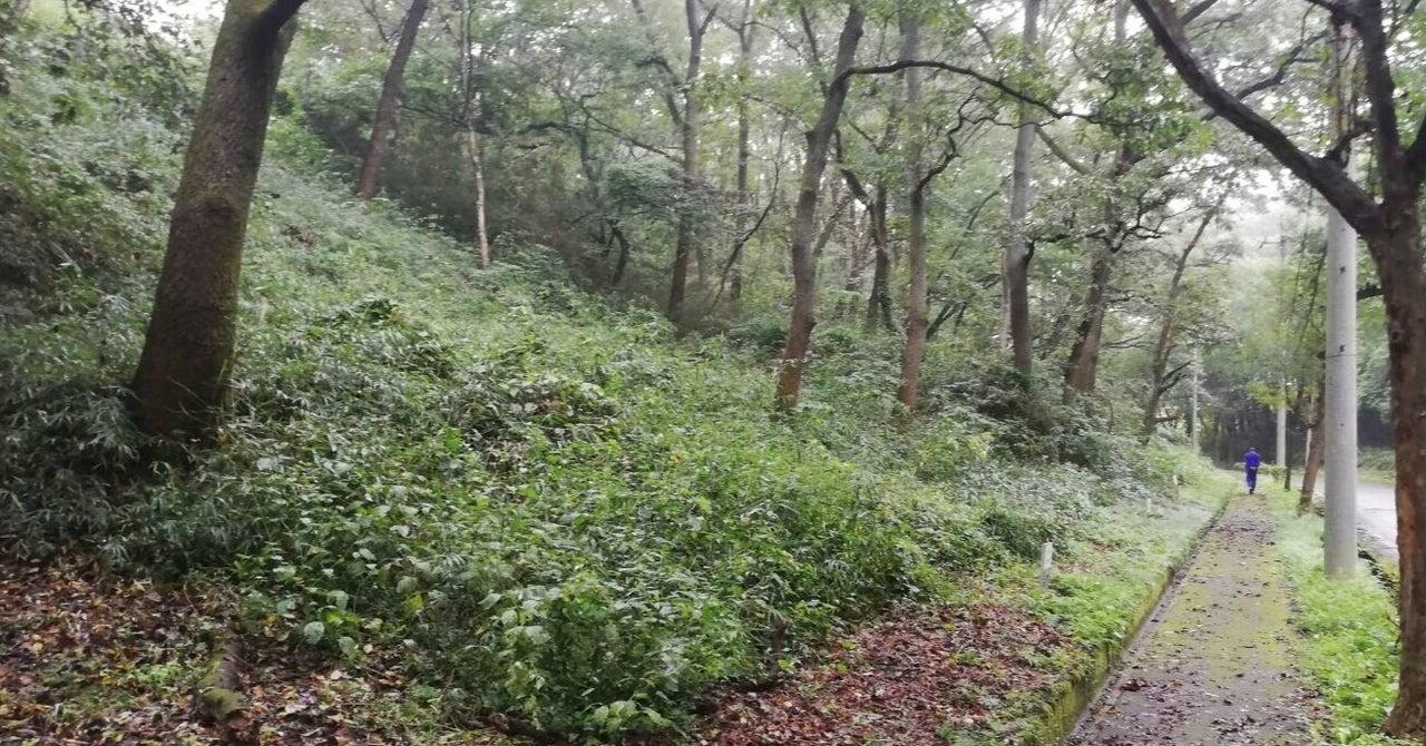 ※成約御礼※#005 朝のジョギングは気持ちがいい。@栃木県那須烏山市